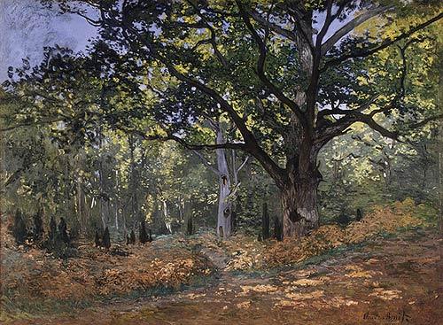 The Bodmer Oak, Fontainebleau Forest, 1865. Claude Monet (French, 1840–1926)
